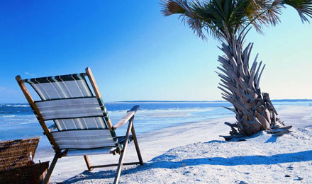 Take In the Sights and Beautiful Beaches in Florida