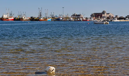 Outer Cape, Provincetown & Chatham waterways