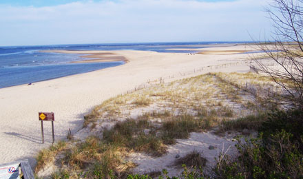 Outer Cape, Provincetown & Chatham Beach