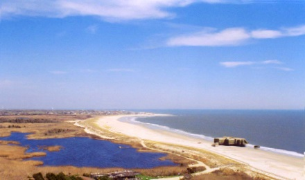 Enjoy a Guided Tour of Picturesque Cape May Point