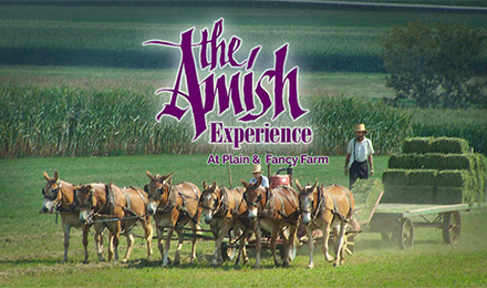 Experience the Amish Lifestyle