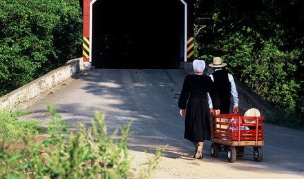 Picture of a Amish Family on a Country Road