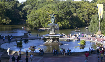 35 Million Individuals have Visited Central Park