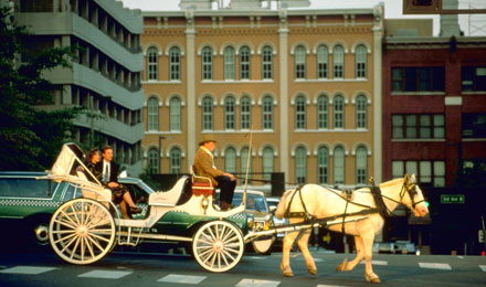 Horse and Buggy in Nashville, Tennessee