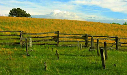 Pastoral Landscapes in the Appalachian Highlands