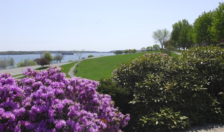 Picture of Casco Bay