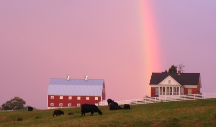 View of a Rainbow at Pineland Farms