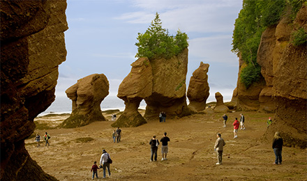 Visitors at Hopewell Rocks