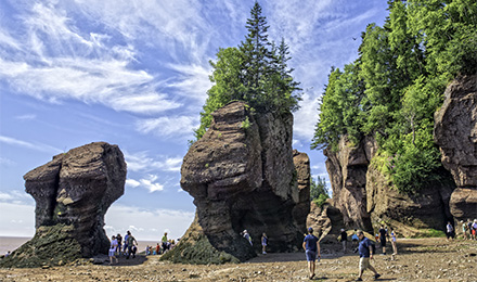 Amazing Hopewell Rocks