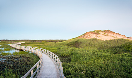 Picturesque Prince Edward Island